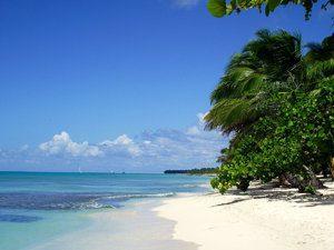 République Dominicaine 3 Raisons De Visiter La Isla Saona