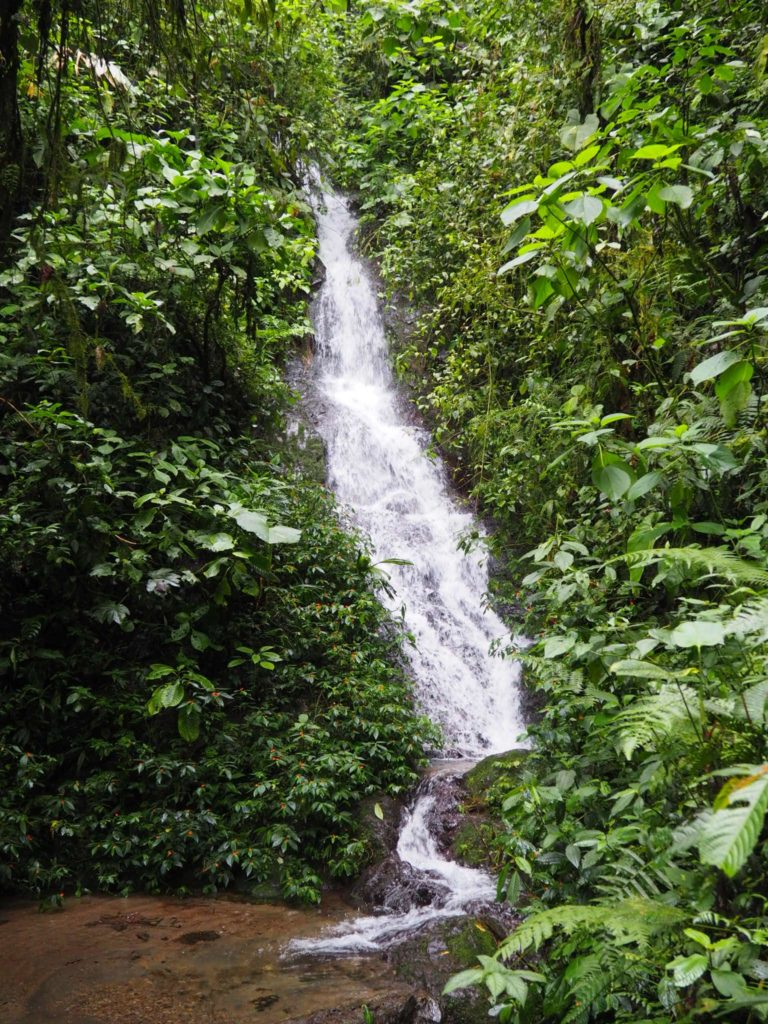 cascade - Mindo- Equateur